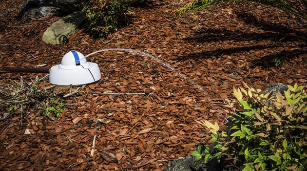 Automatsko zalijevanje vrta Foto: Irobot.com